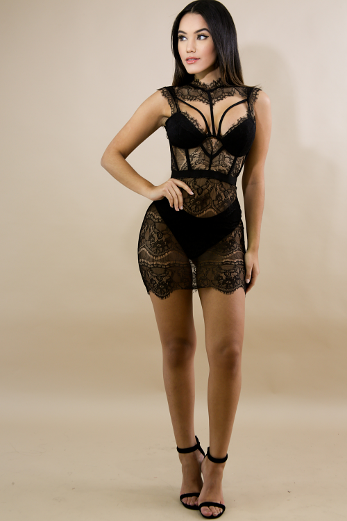Sheer Lace Sexy Dress