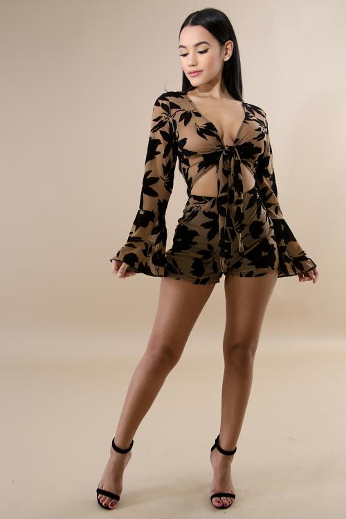 Velvet Sheer Bow Body-Con Dress
