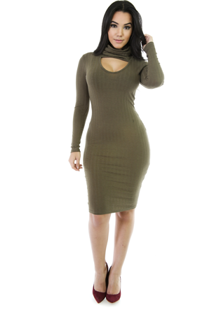 Jenny Turtle-Neck Bodycon Dress