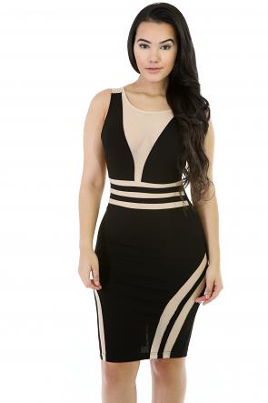 Mesh Sleevless Stretchy Mini Dress