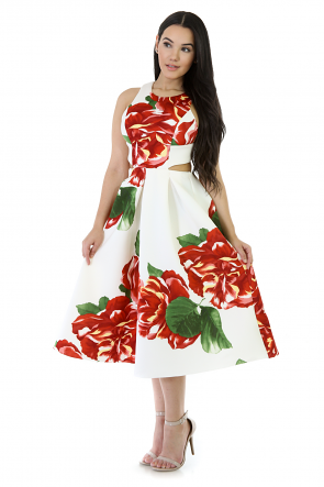 Red Rose Flare Midi Dress