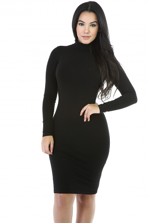 Long Sleeve Turtleneck Bodycon Dress