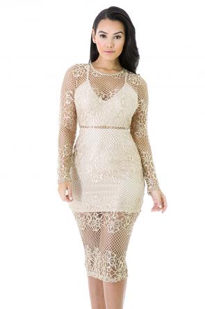 Lace Floral Print Dress
