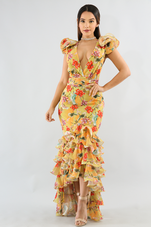Garden Floral Swirl Dress