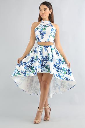 Delphiniums Skirt Set