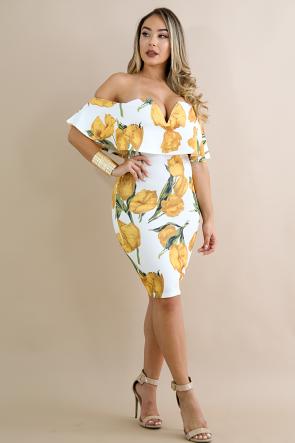 Tulipan Flare Dress