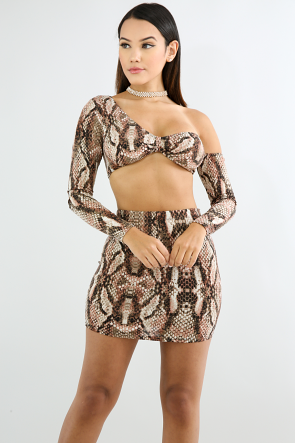 Flaming Cheetah Mini Skirt Set