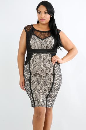 Sweet Lace Body-Con Dress