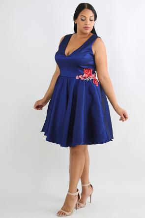 Flare Floral Applique Dress