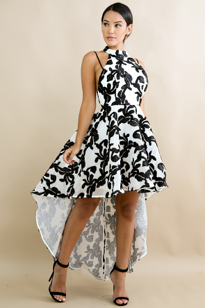 Net Embroidered Swirl Long Tail Dress