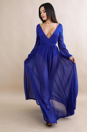 Sheer Dainty Shine Maxi Dress