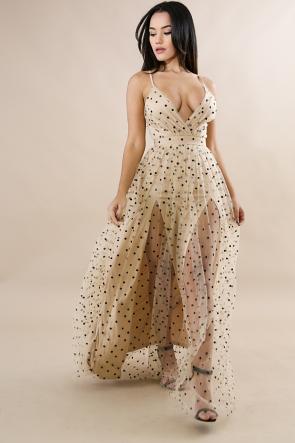 Polka Dot Sheer Maxi Dress