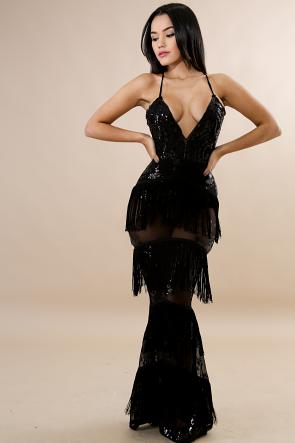 Sheer Sequin Fringe Dress