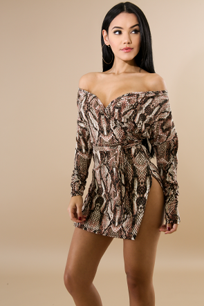 Cheetah Girl Long Sleeve Mini Dress