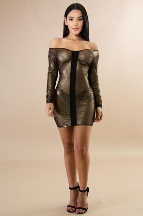 Long Sleeve Sheer Dress