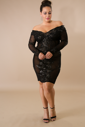 Sequin  Mesh Long Sleeve Midi  Dress