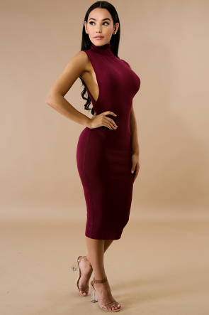 Turtle Neck Side Slits Midi Dress