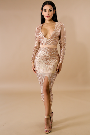 Fierce Sequin Sheer Body-Con Dress