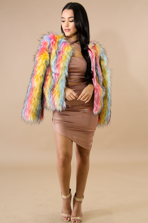 Rainbow Fur Coat