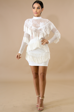 Sheer Sequin Fringe Body-Con DRess