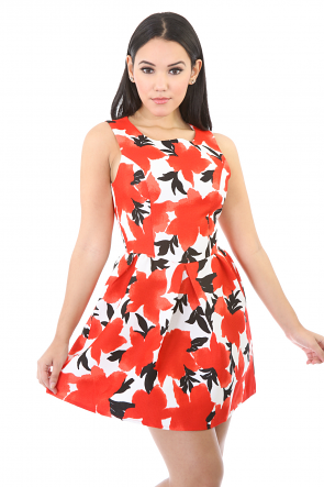 Red Berry Dress