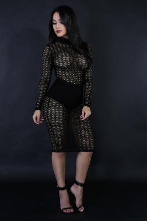 Sexy Mesy Bodycon Dress