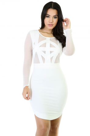 Mesh Nesh Bodycon Dress